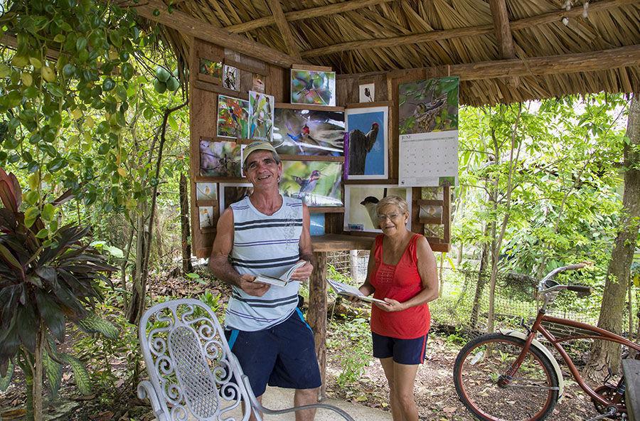 Bernabé Hernández, y su esposa Juanita, vecinos del poblado de Pálpite, en la Ciénaga de Zapata, son los protectores de estan dimunutas aves. Foto: Ismael Francisco/Cubadebate.