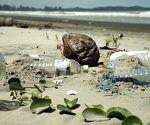 Basura plástica en las costas. Foto: Ecoosfera.