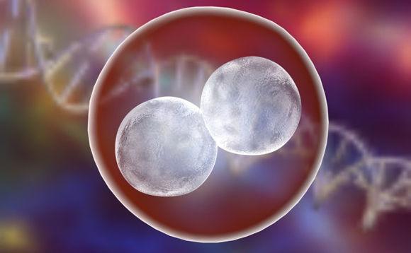 Científicos alteran por primera vez en EU genes de embrión humano