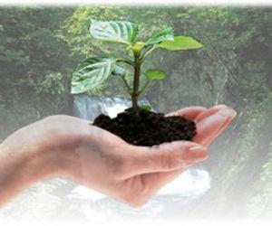 Cuba también celebra Día Mundial del Medio Ambiente