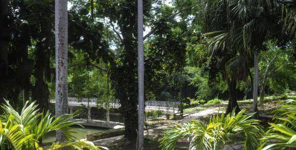 """Vista del Mirador, en el Centro de Recreación """"Rio Cristal"""". Foto: ACN/ Oriol de la Cruz Atencio Hernández"""
