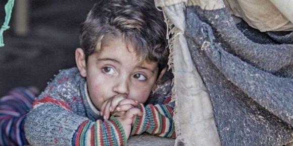 La agencia siria de noticias SANA, informó el 22 de agosto pasado que los bombardeos de la coalición internacional provocaron 78 muertos en un solo día.