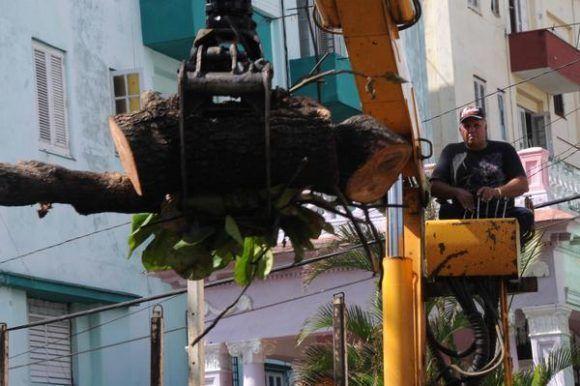 Fuerzas combinadas del Ministerio de la Agricultura y Servicios Comunales trabajan en la recuperación y limpieza de las arterias de la capital, luego del paso del huracán Irma por la costa norte de La Habana, Cuba, el 11 de septiembre de 2017.   ACN FOTO/Omara GARCÍA MEDEROS/sdl