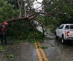 danos-del-huracan-maria-en-republica-dominicana