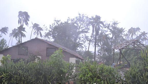 En el litoral de Mata Guando y Barigua, el viento se siente aún con fuerza de tormenta tropical. Foto: @labaracoesa