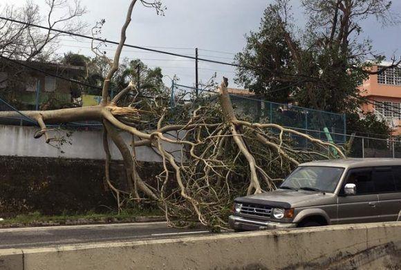 Daños causados por el devastador huracán María, que azotó la isla con vientos de más de 200 kilómetros por hora ocasionando inundaciones y destrozos en toda la isla Foto: Jorge Muñiz / EFE