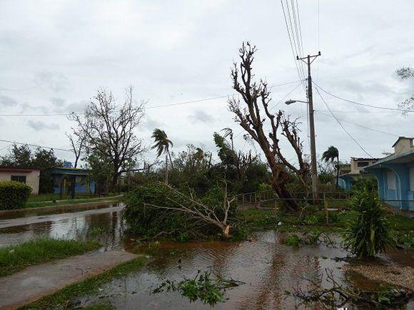 Afectaciones en Ciego de Ávila, debido al paso de Irma. Foto: Ortelio González Martínez/ Facebook.