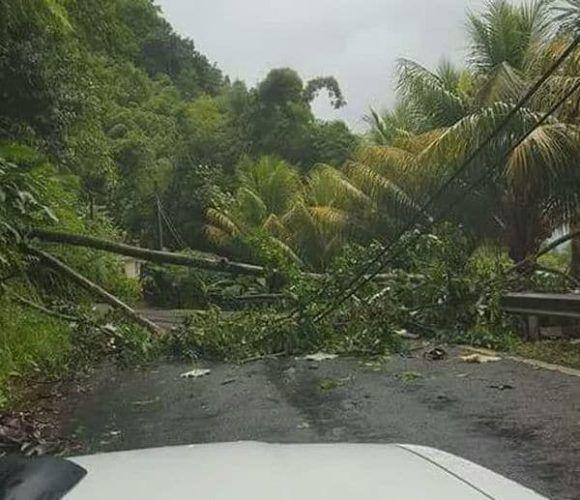 Difunden videos de los daños que causó el huracán María en Dominica