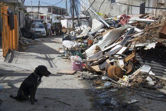 La isla caribeña de Saint-Martin tras el paso del Huracán María. Foto: Helene Valenzuela / AFP