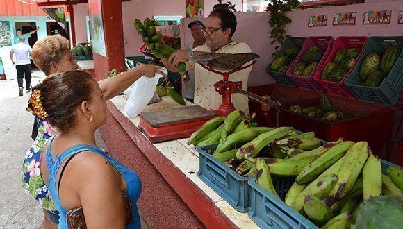 Son abastecidos los mercados Agropecuarios Estatales en la ciudad de Bayamo. Foto: Armando Ernesto Contreras / ACN
