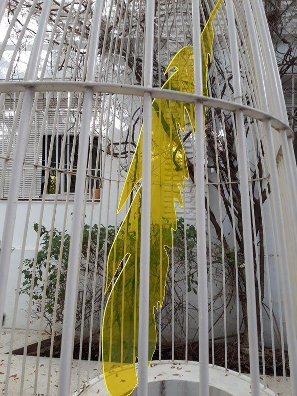 Ocho artistas florales del mundo toman por asalto los portales de Córdova. Foto: Maribel Acosta