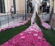 Córdoba: lugar de la memoria, la cultura y las flores. Foto: Maribel Acosta