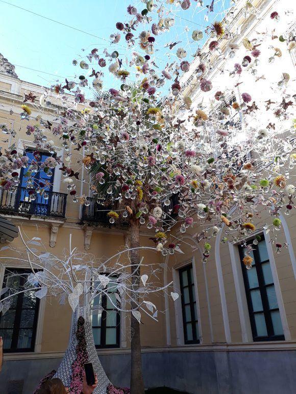 La ciudad andaluza de Córdova se ha llenado de flores en este Primer Festival Internacional de las flores de esta ciudad. Foto: Maribel Acosta