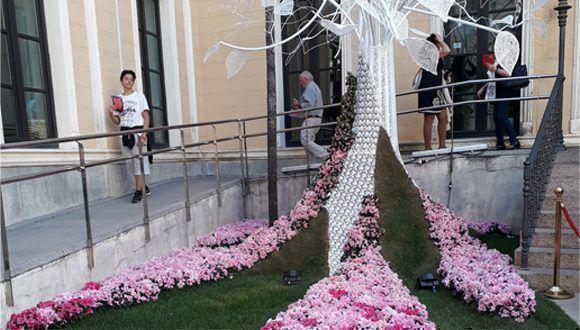 Córdoba se engalana en su Primer Festival Internacional de las flores. Foto: Maribel Acosta