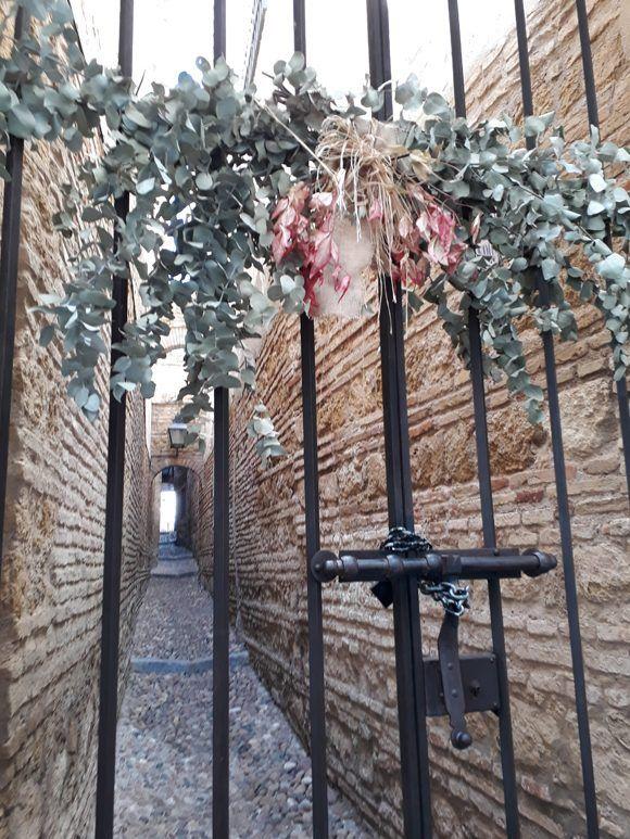 Las flores coronan los patios de Córdoba. Foto: Maribel Acosta