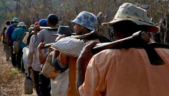 Las políticas de Temer y sus compromisos políticos con los terratenientes han disparado el trabajo esclavo en Brasil. Foto: Archivo.