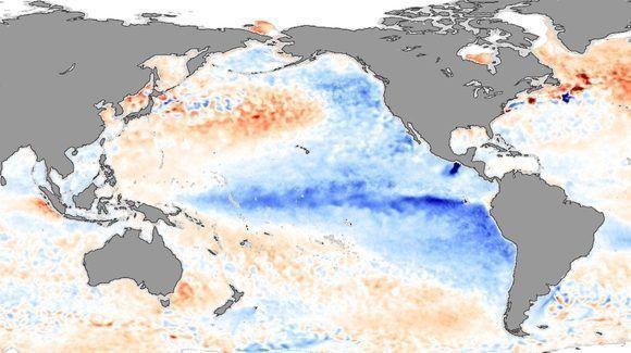 Anomalías frías (en azul) de la temperatura superficial del mar en el océano Pacífico durante la evolución de La Niña. Imagen: NASA, noviembre de 2007.