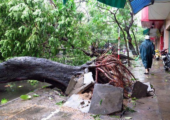 Daños en Vietnam por el tifón. VNA.