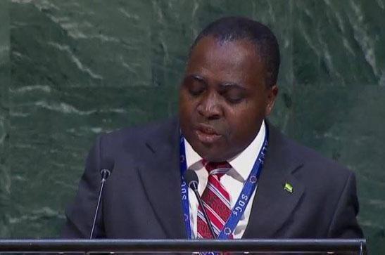 representante-de-africa