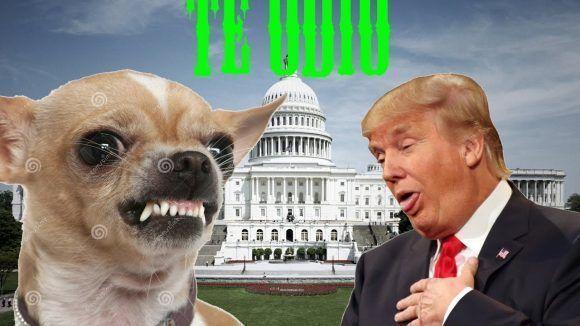 trump-y-el-perro
