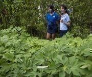 Los estudiantes están vinculados a una sociedad científica agropecuaria. Foto: Ismael Francisco / Cubadebate