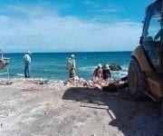Trabajan en la reconstrucción del Malecón de Gibara. Foto: LA Voz Del Atlantico Gibara/ Facebook.