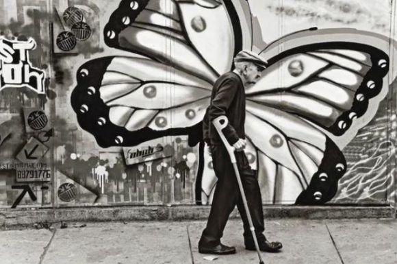 Las alas de la vejez. Foto: David Taggart.