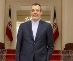 El vicecanciller iraní para Asuntos Árabes y Africanos, Husein Yaberi Ansari. Foto: Hispantv.