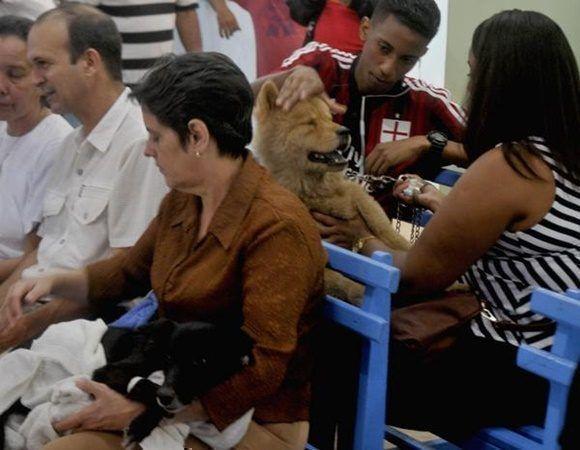 Pobladores asisten con sus mascotas en busca de atención médica, a la recién reinaugurada Clínica Veterinaria José Luís Callejas Ochoa, conocida popularmente como Carlos III, en La Habana, Cuba, el 27 de diciembre de 2017. ACN FOTO/Oriol de la Cruz ATENCIO/sdl
