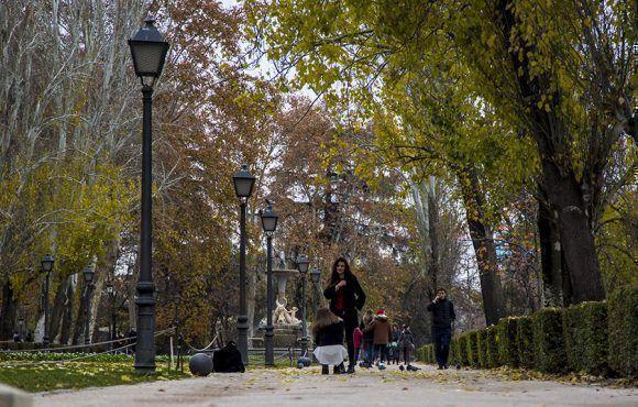 Con 125 hectáreas y más de 15.000 árboles, el parque de El Retiro es un remanso verde en el centro de Madrid. Foto: Ismael Francisco/ Cubadebate.