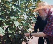 Fidel defendió el valor de la agricultura sostenible y orgánica en Cuba, octubre de 2012. Foto: Alex Castro.