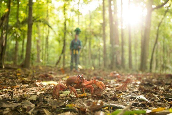Migración de Cangrejos Rojos en la Isla de Navidad. Foto: EFE.