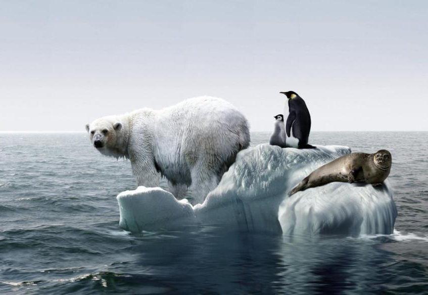 Un año de eventos climáticos históricos