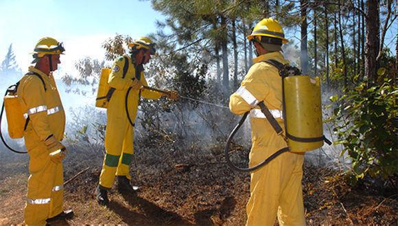 En Cuba, Campaña nacional de protección contra incendios forestales