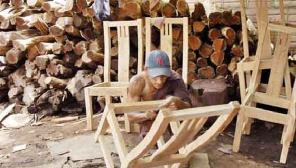 Fabrican en China máquina cosechadora de marabú para Cuba