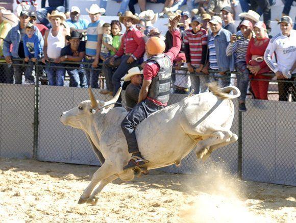 Destacan tradición de ganaderos camagüeyanos en práctica del Rodeo