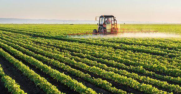 Marco Rubio opuesto a proyecto de ley agrícola por acápite sobre Cuba