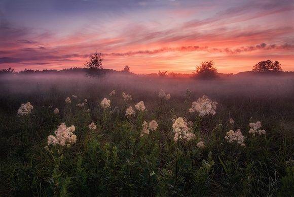 Autor: Alexey Sergovantsev. Locación: Smolensk, Dorogobuzh, Federación de Rusia.