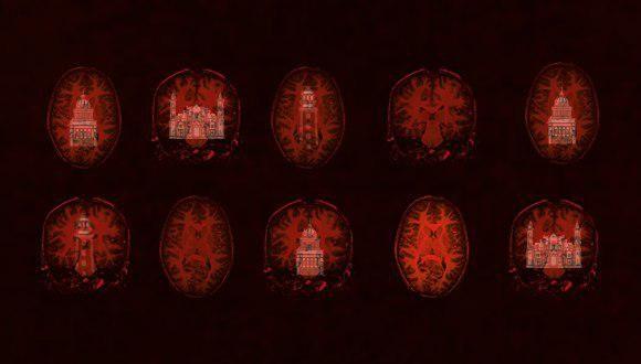 habana imagenes cerebrales
