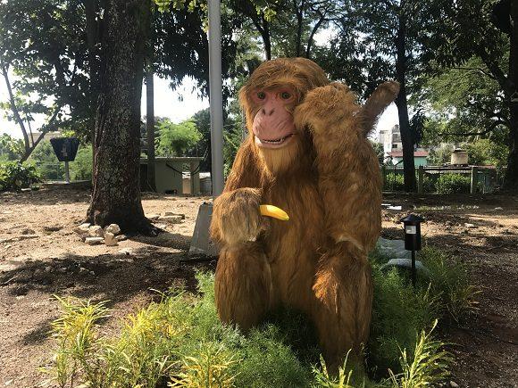 Es posible ver en todo el terreno monos, muchos de ellos animatrónicos, por lo que interactúan con los visitantes. Foto: Dinella García/Cubadebate.
