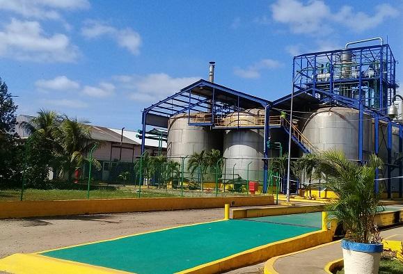 Agroindustria azucarera de Cuba apuesta por la inversión extranjera para su desarrollo