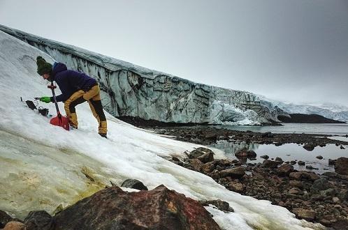 Toma de muestras de algas nevadas en el glaciar Collins en la Antártida