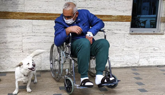 Amistad: Mascota espera días fuera de un hospital a que se recupere su dueño enfermo de COVID-19 (+Video)