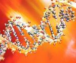 El nuevo método podría allanar el camino hacia desarrollos importantes en ciencias forenses, ecología e incluso en medicina. Foto: National Geographic.