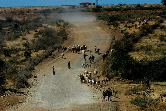 Desierto de Ogaden, en Etiopía. Foto: Ismael Francisco/ Cubadebate.