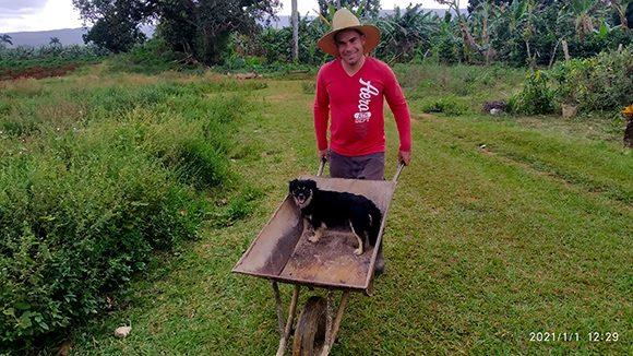 Gabriel en labores agrícolas, acompañado de su perrito Pequi. Foto: Ismael Francisco/ Cubadebate.