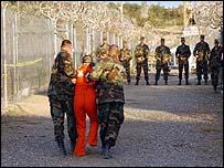 The Birds of Guantanamo