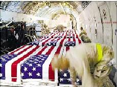 Los muertos de W. Bush